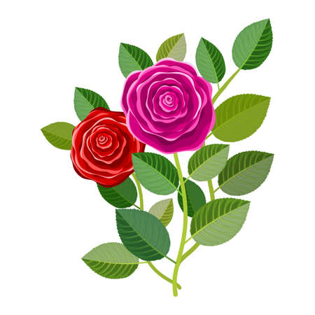 Floral frame with bouquet of roses isolated on withe background. Ideal for integrating a personalized message or dedication allusive to various events or celebrations. Illustration.Design.Digital art.