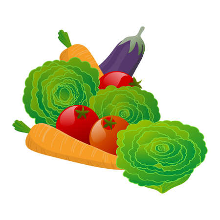 Stylized illustration with set of vegetables for salad. Isolated on white background. Digital art.