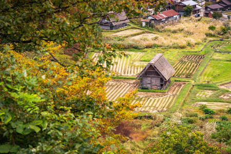 Gassho-zukuri  houses in Shirakawa Village