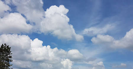 Beautiful clouds on sky in summer