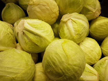 Fresh green iceberg vegetable of the summer season 版權商用圖片 - 103664566