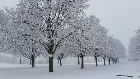 Heavy snow in winter Imagens - 103696918