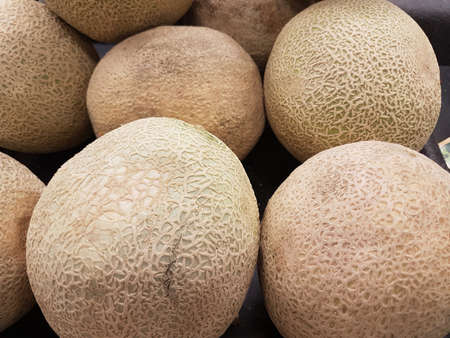 Cantaloupe in summer at home