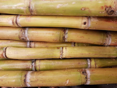 Sugarcane from fields in the city outskirts areas and stores