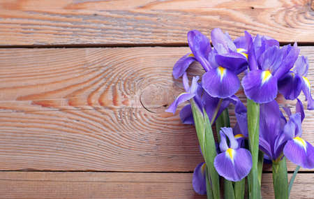 Iris on an old wooden background. Selective focus. Copy space background Stock Photo