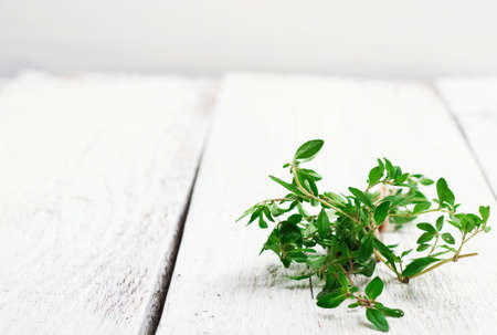 Still life, food and drink, health concept. Fresh herbs (thyme) on a wooden table. Selective focus, copy space white background, rustic style