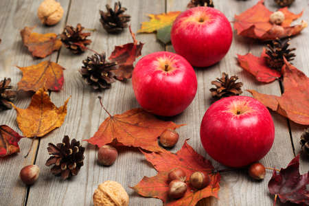 autumn food: Still life, food and drink, seasonal concept. Autumn apples with nuts, cones and leaves on a wooden background. Selective focus