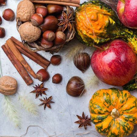 Autumn fall harvest halloween still life composition with pumpkin nuts chestnut spices on rustic table. Selective focus, top view overhead flat lay
