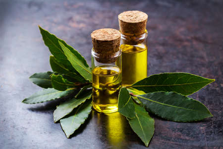 Healthy lifestyle concept. Natural bay laurel essential oil, essence in glass bottle with leaves on a rusty black table for beauty, spa, therapy