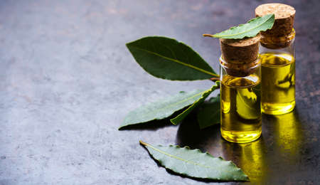 Healthy lifestyle concept. Natural bay laurel essential oil, essence in glass bottle with leaves on a rusty black table for beauty, spa, therapy. Copy space background Stock Photo