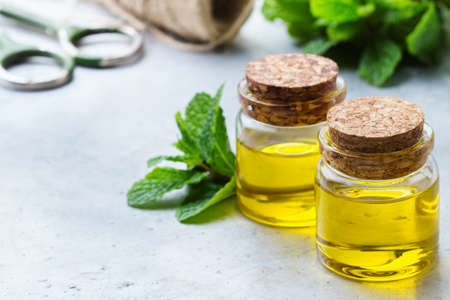 bath supplement: Health and beauty, still life concept. Organic essential mint oil in a small glass jar with green leaves. Copy space background Stock Photo