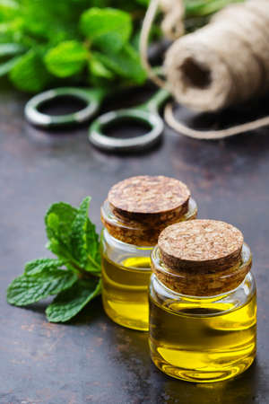 bath supplement: Health and beauty, still life concept. Organic essential mint oil in a small glass jar with green leaves