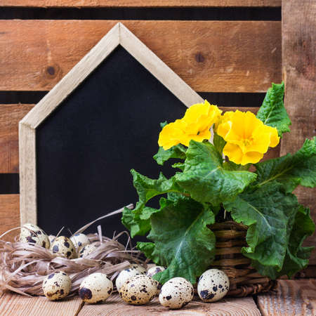Happy holidays easter spring festive decoration. Yellow primula primrose flowers in a pot, home house chalkboard and quail eggs in a nest on a rustic wooden background
