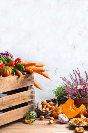 Fall autumn harvest thanksgiving concept. Organic fresh ripe festive vegetables, pumpkins, green thyme and purple flowers on a rustic wooden table. Copy space rural background