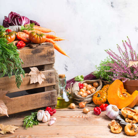 butternut: Fall autumn harvest thanksgiving concept. Organic fresh ripe festive vegetables, pumpkins, green thyme and purple flowers on a rustic wooden table. Rural background Stock Photo