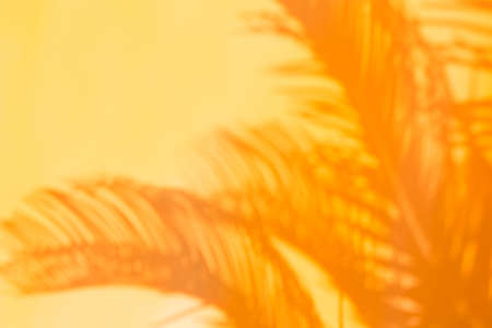 Abstract unfocused blurred orange background with palm leaves shadows. Tropical, summer, holidays, vacations concept.