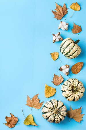 Autumn fall thanksgiving day composition with decorative orange pumpkins and dried leaves. Flat lay, top view, copy space, still life background for greeting card