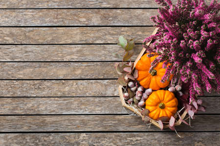 Creative autumn fall thanksgiving day composition with decorative orange pumpkins and purple heather. Flat lay, top view, copy space, still life wooden background. Floral, botanical concept.