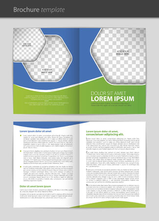 Vector empty brochure template design Vector