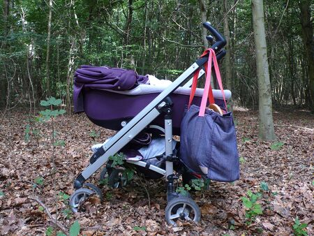 stroller in a forest, in saint-germain forest, FRance Stock Photo - 42301673
