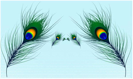vector design of peacock hair on light abstract backgrounds Stock Photo