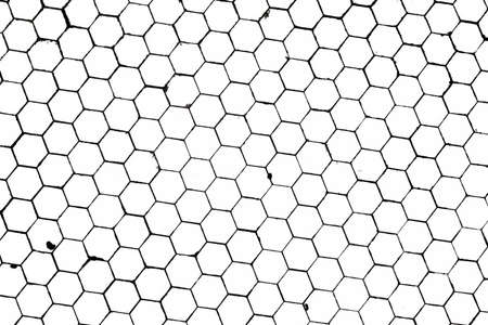 Black and White Honeycomb texture on a White Background photo