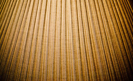 pleated texture of a lamp shade Stock Photo - 9884878