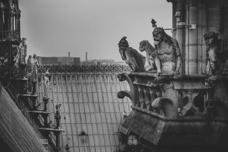 Gargouille de créature mythique sur le toit de la cathédrale Notre Dame de Paris. Vue depuis la tour.