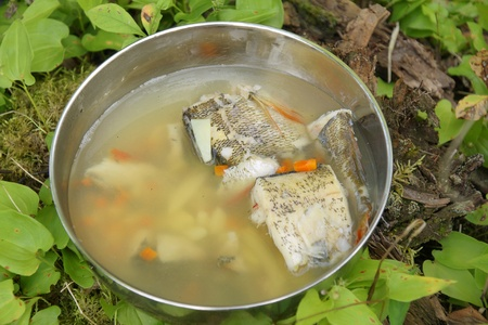 Fish soup on wood ground  outdoor   photo