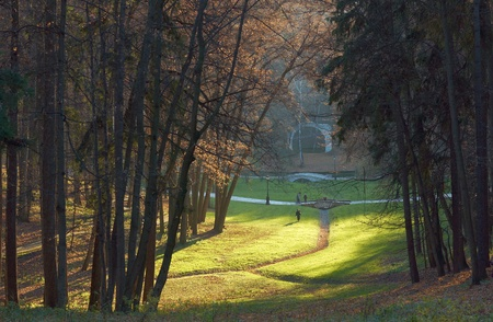 foot bridges: Foot bridges and grassy plot in autumn Tsaritsyno park, Moscow, Russia