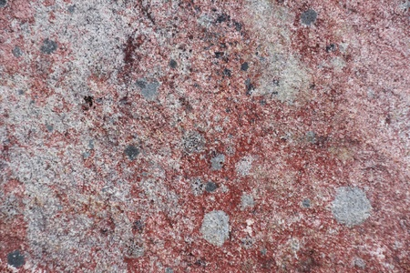 Surface of natural red and gray spotted stone as background