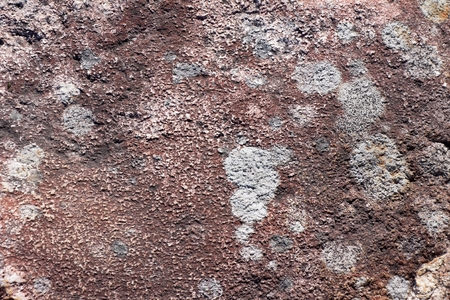 Surface of natural  dark red stone  crimson quartzite porphyry  as background