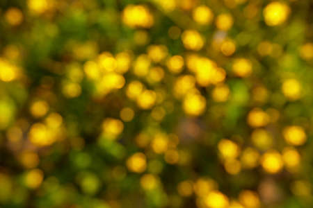 Backgrounds of green and yellow image