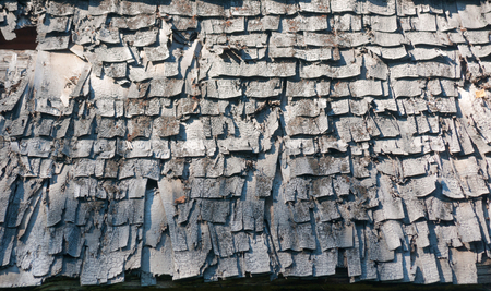 Old roof covered with tree bark