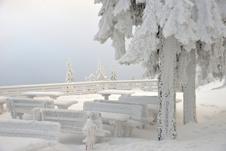 Snow-covered tables and benches