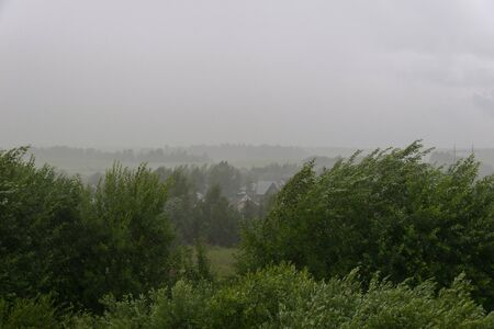 Downpour with wind in thunderstorm over village in summer
