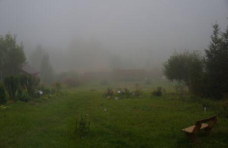 Heavy fog in garden in summer village Фото со стока