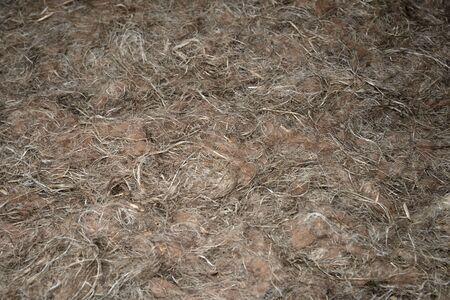 Material concrete from hemp fiber Фото со стока