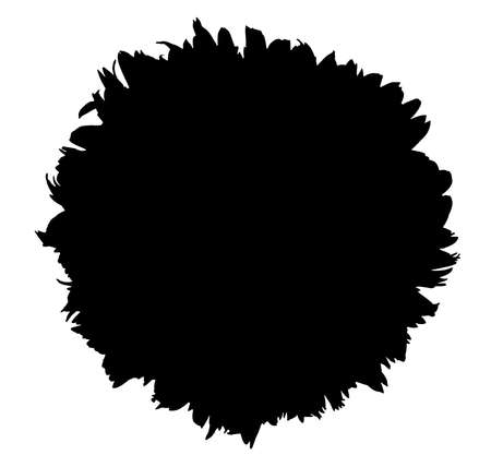 Close up of silhouette sunflower isolated on white background with clipping path. Top view of black flower on white pattern.