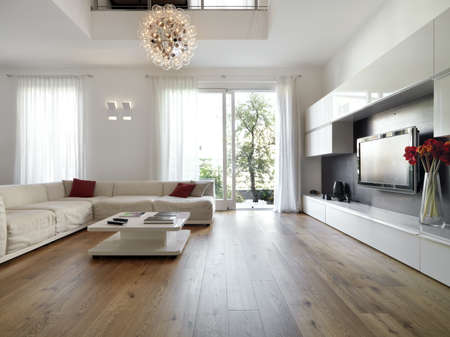 apartment interior: modern living room overlooking the garden Stock Photo
