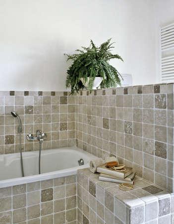 salle de bains: d�tail de la baignoire dans une salle de bain moderne avec des plantes Banque d'images