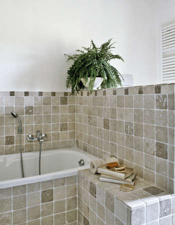 bathroom tile: detail of bathtub in a modern bathroom with plant Stock Photo