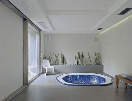 modern bathtub in the basement with large window and flowerpot