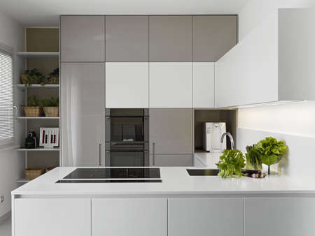 interior desing: modern kitchen with vgetables on the white worktop