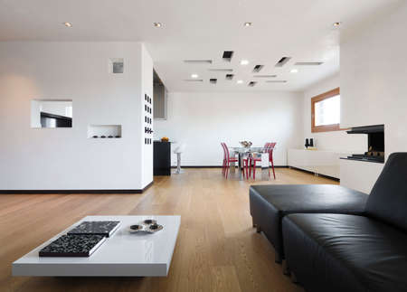 interior view of a modern living room with wood floor