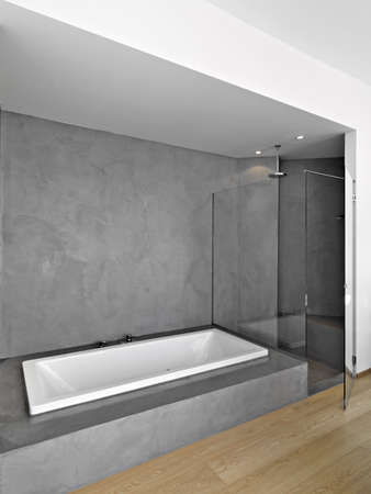 shower cubicle: interior view of a modern bathroom in foreground the bathtub