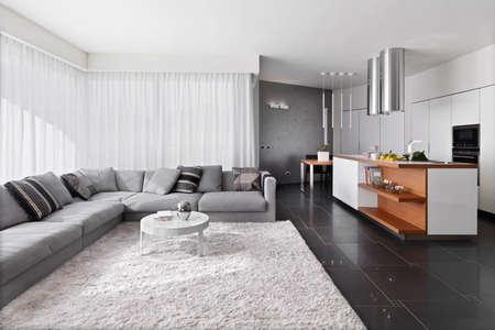 Innenansicht der modernen Wohnzimmer mit Sofa und Teppich mit Blick auf te Küche Lizenzfreie Bilder - 48069002