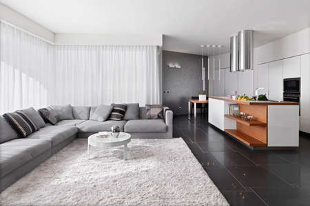 interior view of modern living room with sofa and carpet overlooking on te kitchen