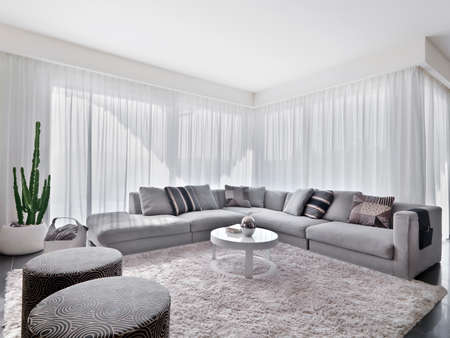 luxury living room: modern sofa with carpet in the living room