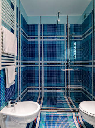 shower cubicle: interior view of a modern bathroom, in foreground shower cubicle Stock Photo